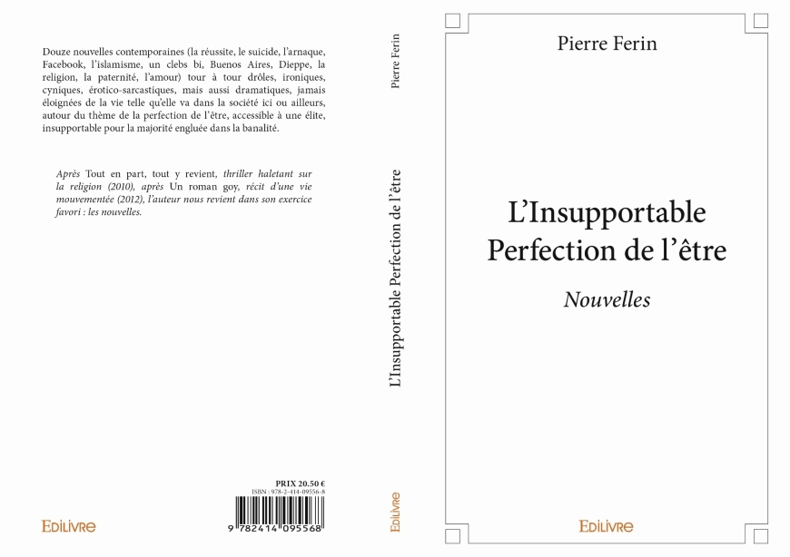 L'insupportable perfection de l'être pierre ferin